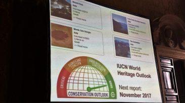 Il report dell'Iucn che attesta l'ottimo stato di salute del sito Monte Etna