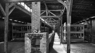 Birkenau, camere a gas