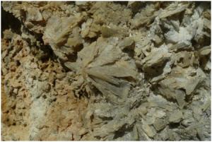 Cristalli di gesso all'interno di una vena decimetrica, Lipari, area Cava del Caolino