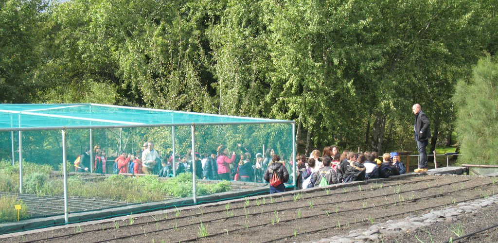 119 Manifestazione educazione ambientale  sede Parco Etna