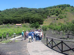1 visitatori sul sentiero del Germoplasma del Parco 2 giugno 2013