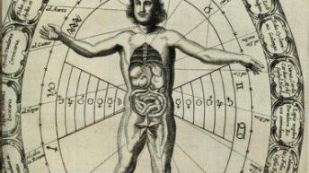 Organi ed Astri