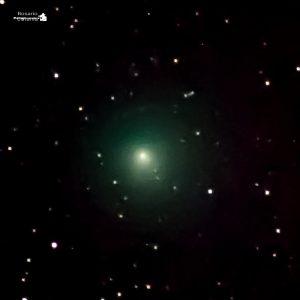 La Cometa 46 P Wirtanen al telescopio