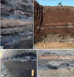 Immagini delle trincee stratigrafiche localizzate in Figura 1 (A) Trincea 3, (B) Trincea 2, e (C) Trincea 1. I depositi di tsunami sono indicati con le sigle LTD (tsunami inferiore, 1343 d.C.; ITD tsunami intermedio 1392 d.C. e UTD 1456 d.C. ). Con la sigla T1 e T2 sono indicati i depositi di eruzioni parossistiche avvenute rispettivamente prima e dopo lo tsunami. (D) dettaglio del deposito di tsunami Superiore (UTd) e del deposito T2. L'attrezzo per la scala è 30 cm di lunghezza, l'euro in (A) è 23,25 mm. La freccia rossa in (A) indica un frammento di ceramica.